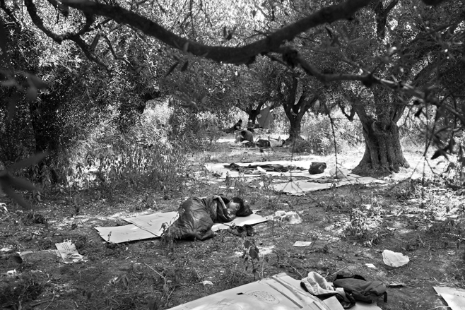 Undocumented Afghan migrant children sleep in a forest on the outskirts of Patras, Greece.  © 2009 Moises Saman/Panos Pictures